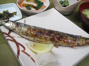 4月17日秋刀魚の塩焼き.JPG