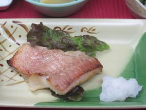 5月18日赤魚西京漬.JPG