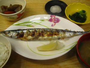 9月11日秋刀魚塩焼き.JPG
