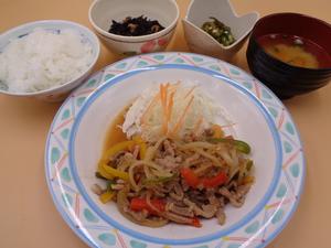 4月12日 牛肉と野菜の和風おろし焼肉.JPG