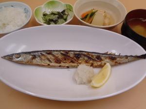 8月19日 秋刀魚の塩焼き.JPG